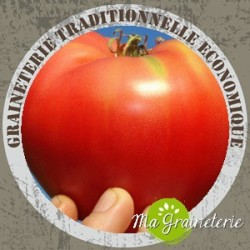 Tomate cœoeur de boeuf