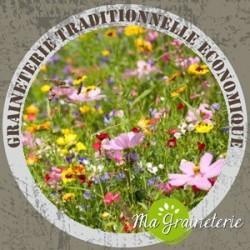 Jachére Fleurie spécial terrain sec